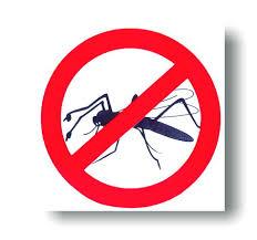 Aby komáre neštípali, stačí lacná pasca na prírodnej báze, alebo ponuka odpudzovače –  plasice.sk